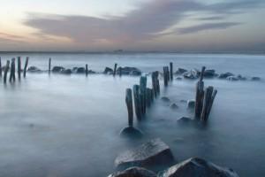 Dimma i hav